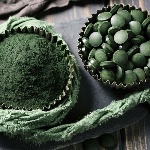 Spirulina Algae Powder Plant